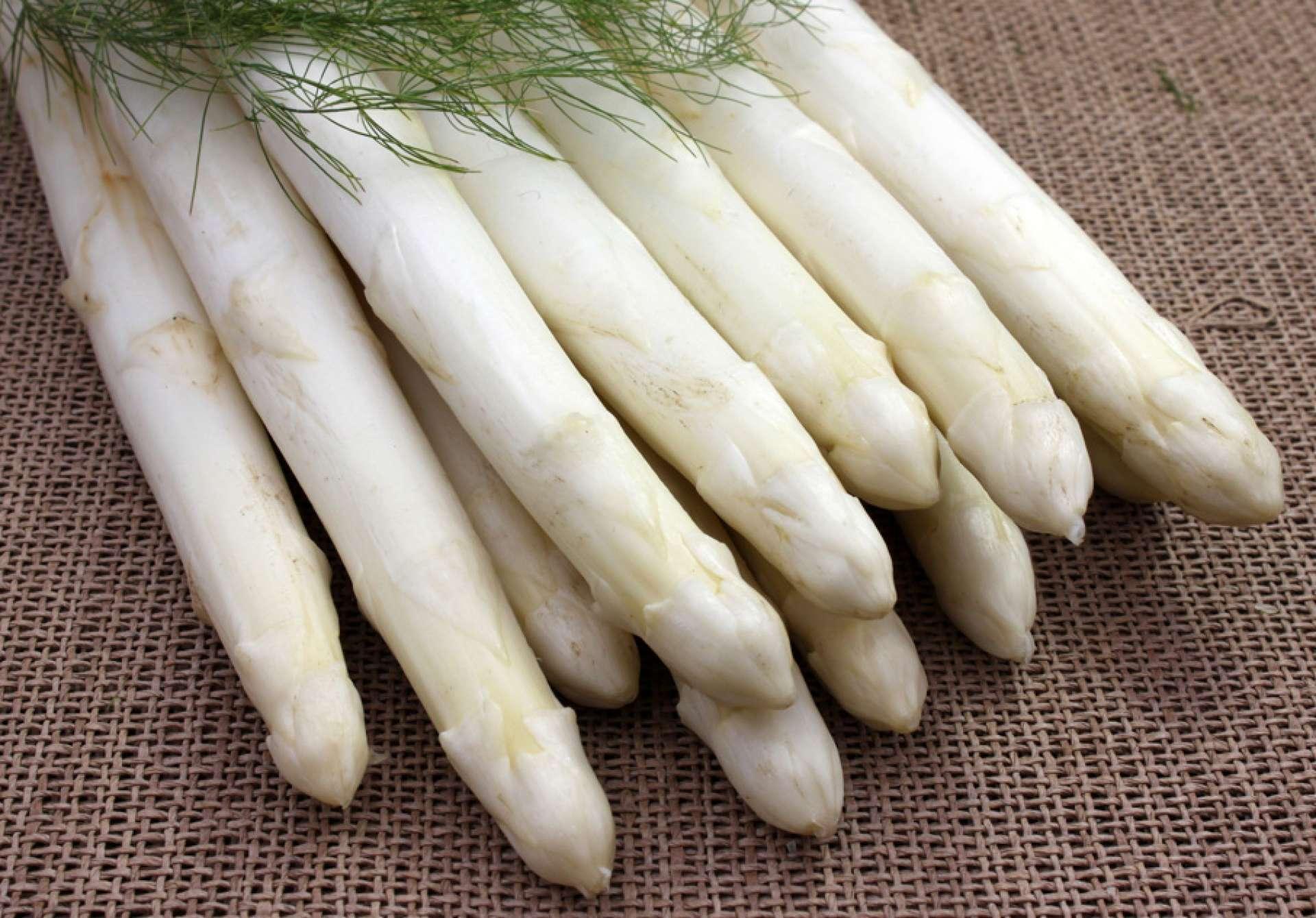 Asparagus Ravel
