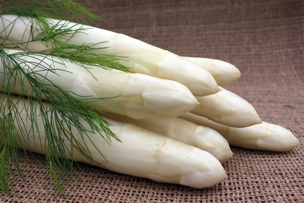 Asparagus Ramires